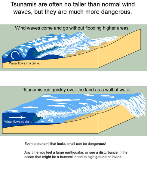 formation - the physics of tsunamis: how is a tsunami formed?